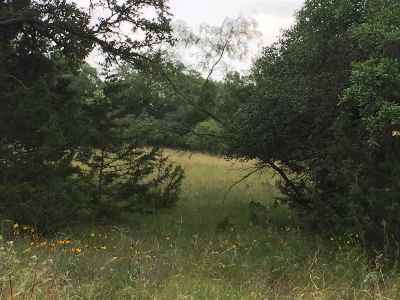 Spicewood Residential Lots & Land For Sale: Lot 77 Cross