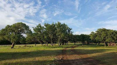 Burnet County Farm & Ranch For Sale: 13019 Cr 108