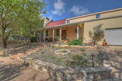 Spicewood Single Family Home For Sale: 223 Hall