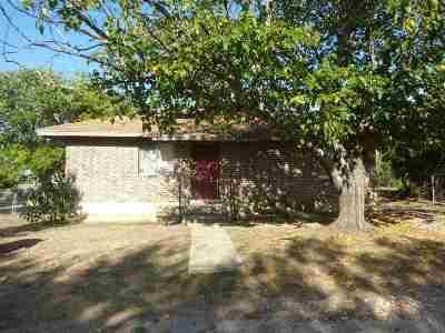 Burnet Single Family Home For Sale: 202 N Shepperd