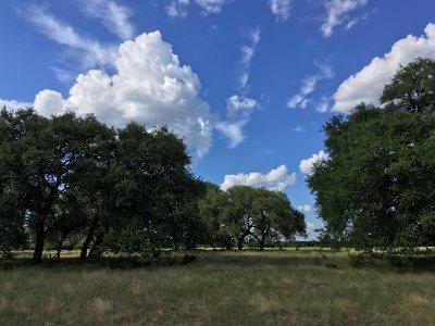 Burnet Farm & Ranch For Sale: +/- 2000 Cr-112