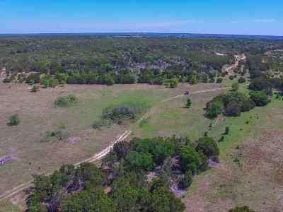 Burnet Farm & Ranch For Sale: Lot 22 Cr 200a