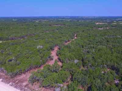 Burnet Farm & Ranch For Sale: Lot 28 Cr 200a