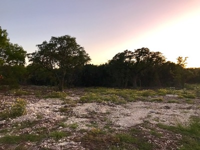Residential Lots & Land For Sale: Tract 13d Cr 200a