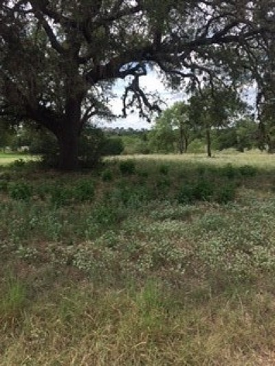 Horseshoe Bay Residential Lots & Land For Sale: 806 Sun Ray