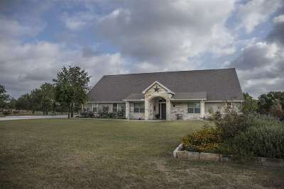 Marble Falls Single Family Home For Sale: 118 Granite Boulevard