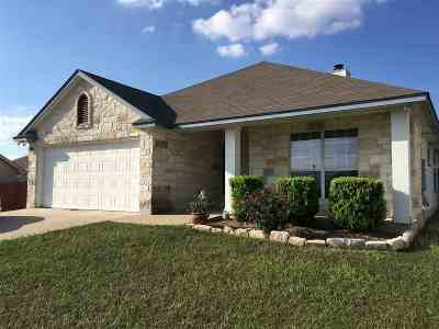 Burnet Single Family Home Pending-Taking Backups: 200 Cailin Court