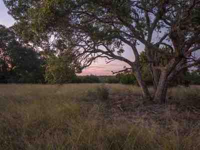 Burnet County Farm & Ranch For Sale: Lot 54 Walnut Canyon