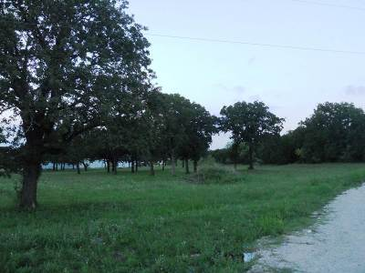 Burnet TX Commercial For Sale: $25,000