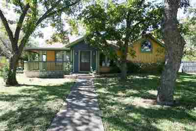 Burnet Single Family Home For Sale: 702 N Main