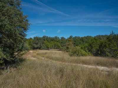 Burnet County Farm & Ranch For Sale: Lot 41 Lost Canyon Creek