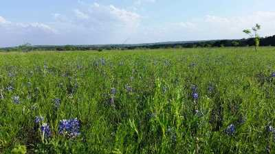 Lampasas Farm & Ranch For Sale: Tract A County Road 1139