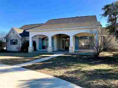 Burnet TX Single Family Home For Sale: $409,750