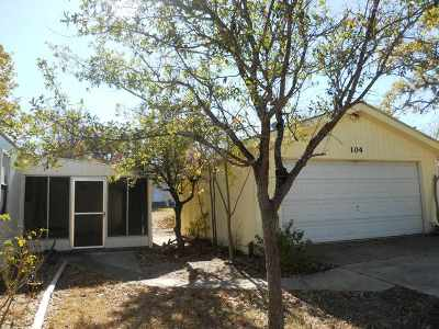 Tow TX Single Family Home For Sale: $99,900