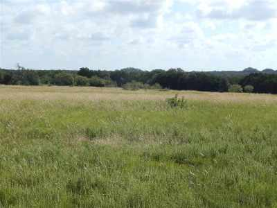Burnet Farm & Ranch For Sale: Tract 39a Judge's