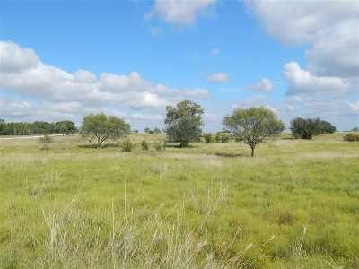 Burnet Farm & Ranch For Sale: Tract 39b Boushka