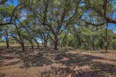 Burnet Farm & Ranch For Sale: Tract 48 Judge's Rd