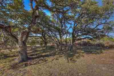 Burnet Farm & Ranch For Sale: Tract 82 Carpenter Court