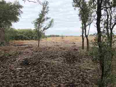 Burnet Farm & Ranch For Sale: Tract 25 County Road 200a