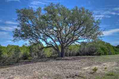 Burnet Farm & Ranch For Sale: Tract 84 Carpenter Court