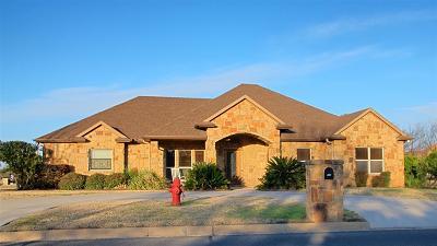 Burnet County Single Family Home For Sale: 318 Firestone Dr