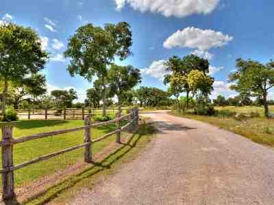 Burnet Farm & Ranch For Sale: 3401 Wolf Creek Ranch
