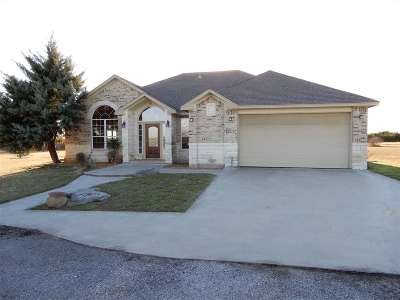 Burnet County Single Family Home For Sale: 9920 Fm 1174