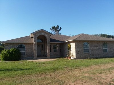 Burnet Single Family Home For Sale: 302 Cty Rd 100