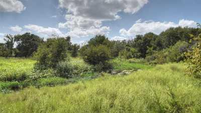 Burnet Farm & Ranch For Sale: Tract 4 Fm 2340