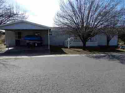 Horseshoe Bay Single Family Home For Sale: 2405 Stag