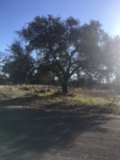 Granite Shoals Residential Lots & Land For Sale: Norwood Drive