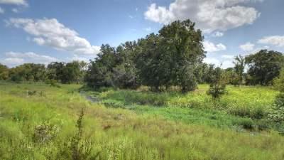 Burnet County Farm & Ranch For Sale: Tract 7 Fm 2340