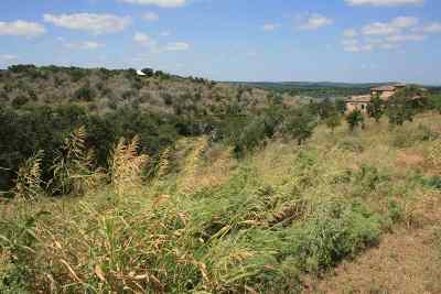 Marble Falls Residential Lots & Land For Sale: 3 Pantera Circle