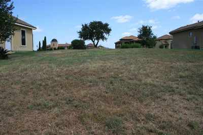 Marble Falls Residential Lots & Land For Sale: 2 Cielo Cir