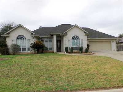 Burnet County Single Family Home For Sale: 259 Meadowlakes Drive