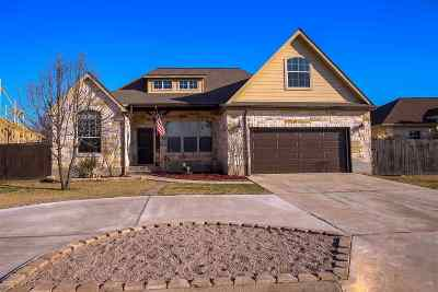 Burnet County Single Family Home For Sale: 125 Turkey Run