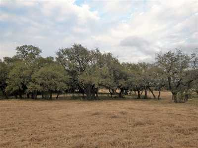 Marble Falls Residential Lots & Land For Sale: Lot 48 Clear Springs Ct