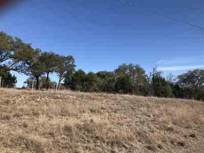 Burnet Farm & Ranch For Sale: Mustang Lane