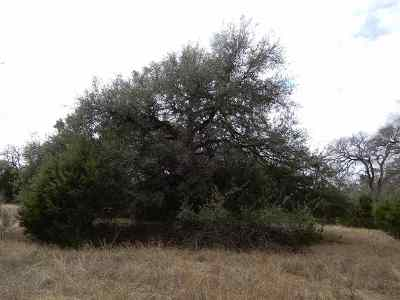 Spicewood Residential Lots & Land For Sale: Lot 47 Cross