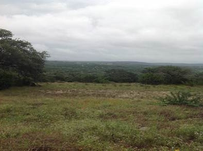 Marble Falls Residential Lots & Land For Sale: 29803 Montana Ridge Pass