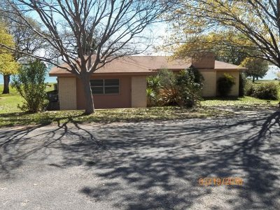Buchanan Dam Single Family Home For Sale: 308 Blue Sky
