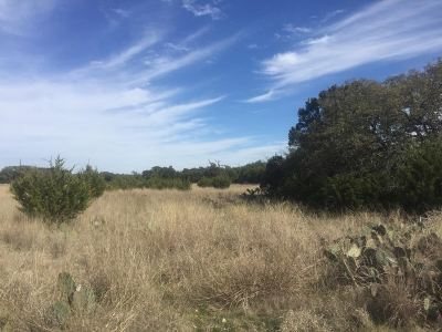 Lampasas Residential Lots & Land For Sale: County Road 106