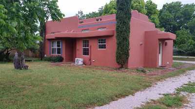 Burnet Single Family Home For Sale: 106 E Graves