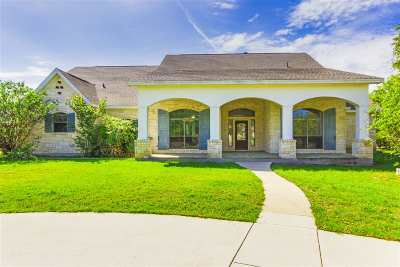 Burnet Single Family Home For Sale: 203 Circle Oaks