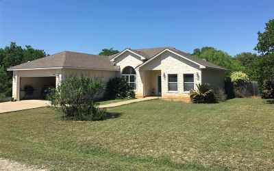 Granite Shoals Single Family Home For Sale: 256 Driftwood