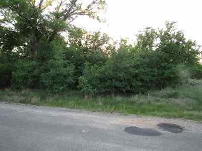 Granite Shoals Residential Lots & Land For Sale: Lot 334&335 Lake Forest