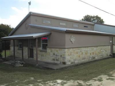 Burnet Single Family Home For Sale: 4213 N Hwy 281