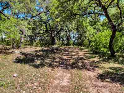 Burnet Farm & Ranch For Sale: 1019 Fm 3509