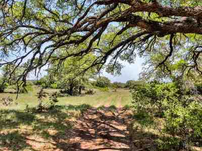 Burnet County Farm & Ranch For Sale: Cord 116b