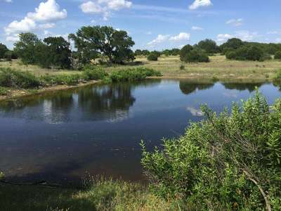 Burnet County, Lampasas County, Bell County, Williamson County, llano, Blanco County, Mills County, Hamilton County, San Saba County, Coryell County Farm & Ranch For Sale: 1600 County Road 268
